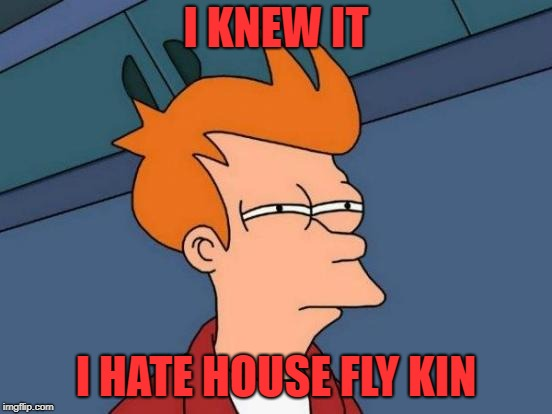 Futurama Fry Meme | I KNEW IT I HATE HOUSE FLY KIN | image tagged in memes,futurama fry | made w/ Imgflip meme maker