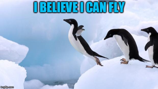 flying penguin | I BELIEVE I CAN FLY | image tagged in flying penguin | made w/ Imgflip meme maker