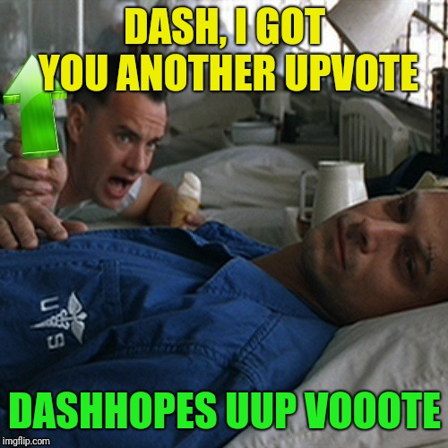 DASH, I GOT YOU ANOTHER UPVOTE DASHHOPES UUP VOOOTE | made w/ Imgflip meme maker