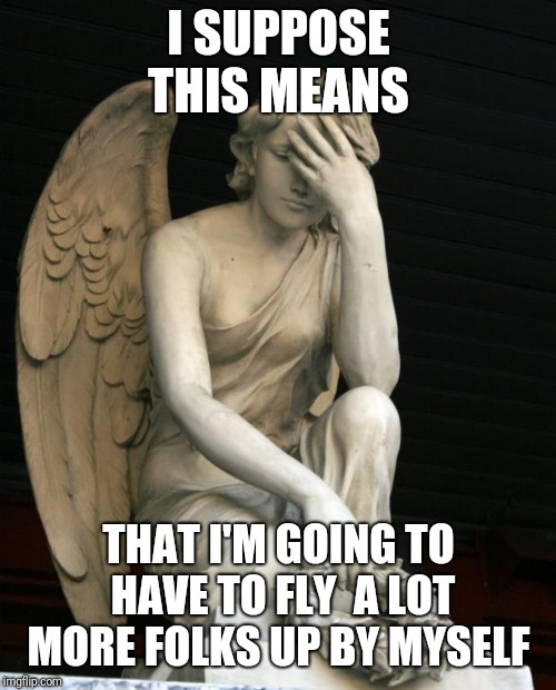 angel facepalm | I SUPPOSE THIS MEANS THAT I'M GOING TO HAVE TO FLY  A LOT MORE FOLKS UP BY MYSELF | image tagged in angel facepalm | made w/ Imgflip meme maker
