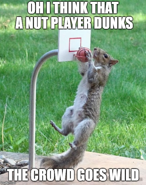 Squirrel basketball | OH I THINK THAT A NUT PLAYER DUNKS THE CROWD GOES WILD | image tagged in squirrel basketball | made w/ Imgflip meme maker