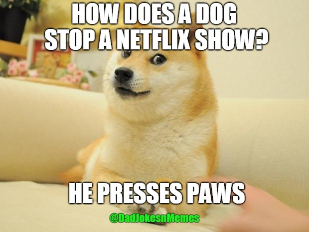 Doge 2 | HOW DOES A DOG STOP A NETFLIX SHOW? HE PRESSES PAWS @DadJokesnMemes | image tagged in memes,doge 2 | made w/ Imgflip meme maker