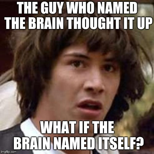 Conspiracy Keanu Meme | THE GUY WHO NAMED THE BRAIN THOUGHT IT UP WHAT IF THE BRAIN NAMED ITSELF? | image tagged in memes,conspiracy keanu | made w/ Imgflip meme maker