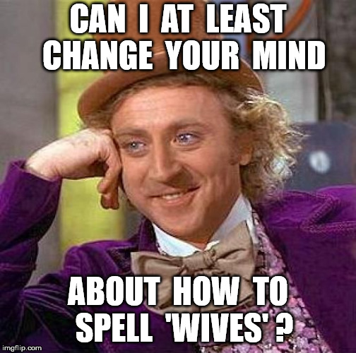 Creepy Condescending Wonka Meme | CAN  I  AT  LEAST  CHANGE  YOUR  MIND ABOUT  HOW  TO  SPELL  'WIVES' ? | image tagged in memes,creepy condescending wonka | made w/ Imgflip meme maker