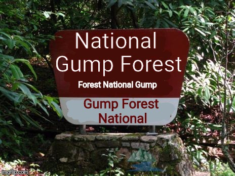 Week Gump Forrest Run  | Forest National Gump Gump Forest National National Gump Forest | image tagged in memes,forrest gump week,forrest gump,flarp,forest gump | made w/ Imgflip meme maker