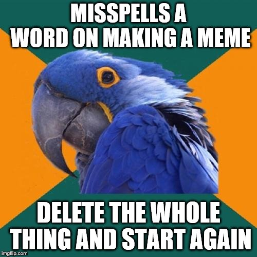 Paranoid grammar-Nazi-victim | MISSPELLS A WORD ON MAKING A MEME DELETE THE WHOLE THING AND START AGAIN | image tagged in memes,paranoid parrot | made w/ Imgflip meme maker