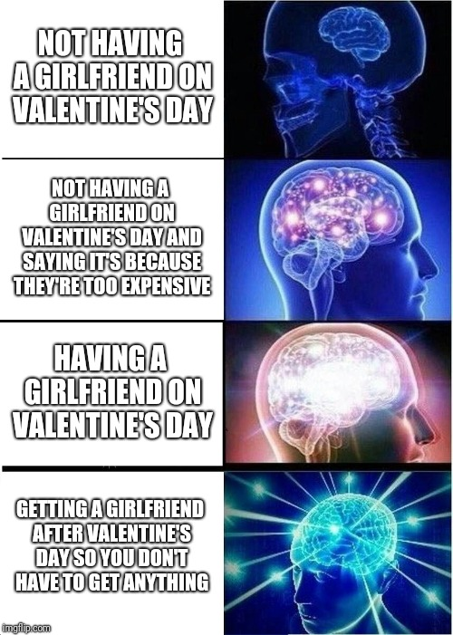 Expanding Brain Meme | NOT HAVING A GIRLFRIEND ON VALENTINE'S DAY NOT HAVING A GIRLFRIEND ON VALENTINE'S DAY AND SAYING IT'S BECAUSE THEY'RE TOO EXPENSIVE HAVING A | image tagged in memes,expanding brain | made w/ Imgflip meme maker