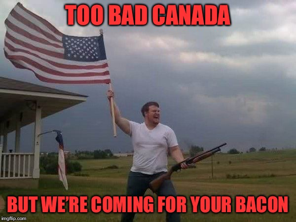 American flag shotgun guy | TOO BAD CANADA BUT WE'RE COMING FOR YOUR BACON | image tagged in american flag shotgun guy | made w/ Imgflip meme maker