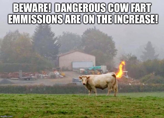 Cow Emmissions | BEWARE!  DANGEROUS COW FART EMMISSIONS ARE ON THE INCREASE! | image tagged in cow,fart,emmissions,methane | made w/ Imgflip meme maker