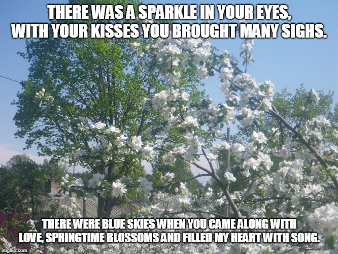 Blue Skies | THERE WAS A SPARKLE IN YOUR EYES, WITH YOUR KISSES YOU BROUGHT MANY SIGHS. THERE WERE BLUE SKIES WHEN YOU CAME ALONG WITH LOVE, SPRINGTIME B | image tagged in kisses,blue skies,springtime blossoms,hearts | made w/ Imgflip meme maker