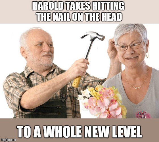 HAROLD TAKES HITTING THE NAIL ON THE HEAD TO A WHOLE NEW LEVEL | image tagged in harold and his wife,hitting the nail on the head | made w/ Imgflip meme maker