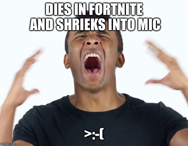 DIES IN FORTNITE AND SHRIEKS INTO MIC >:-( | image tagged in fortnite meme | made w/ Imgflip meme maker