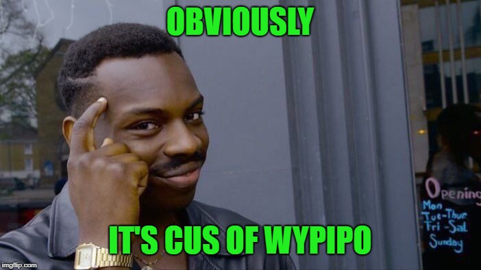 Roll Safe Think About It Meme | OBVIOUSLY IT'S CUS OF WYPIPO | image tagged in memes,roll safe think about it | made w/ Imgflip meme maker