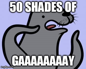 Homophobic Seal Meme | 50 SHADES OF GAAAAAAAAY | image tagged in memes,homophobic seal | made w/ Imgflip meme maker