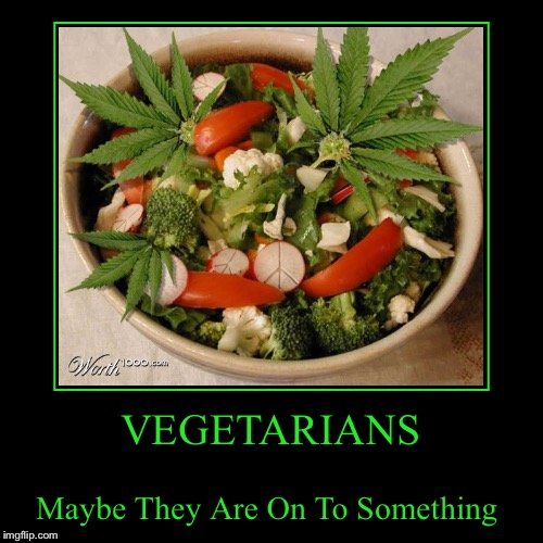 """Excuse me ma'am, You forgot my ranch"".... 