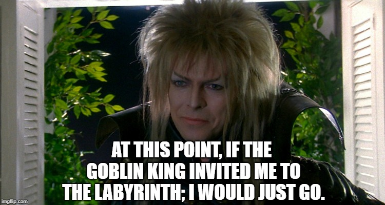 AT THIS POINT, IF THE GOBLIN KING INVITED ME TO THE LABYRINTH; I WOULD JUST GO. | image tagged in david bowie | made w/ Imgflip meme maker