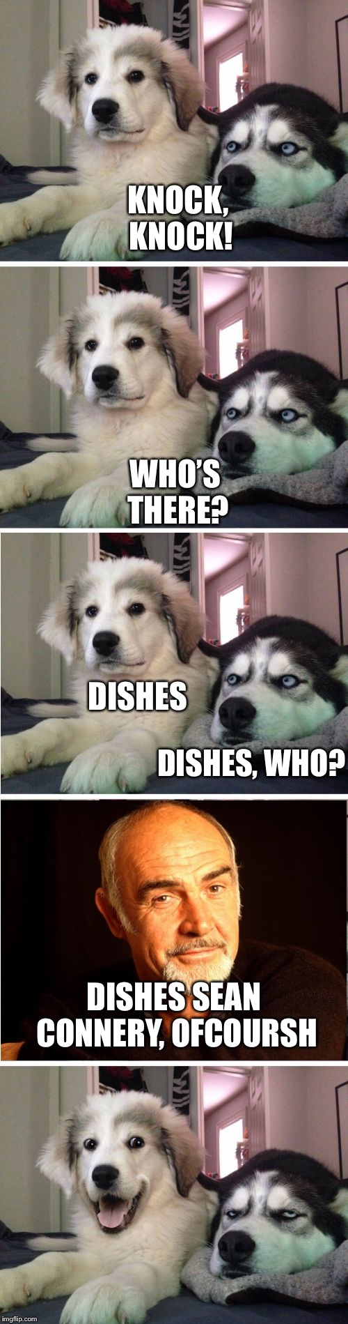 Knock Knock Dogs | KNOCK, KNOCK! DISHES WHO'S THERE? DISHES, WHO? DISHES SEAN CONNERY, OFCOURSH | image tagged in knock knock dogs | made w/ Imgflip meme maker