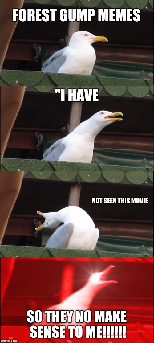 "Inhaling Seagull Meme | FOREST GUMP MEMES ""I HAVE NOT SEEN THIS MOVIE SO THEY NO MAKE SENSE TO ME!!!!!! 