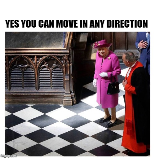 check mate | YES YOU CAN MOVE IN ANY DIRECTION | image tagged in queen,chess | made w/ Imgflip meme maker