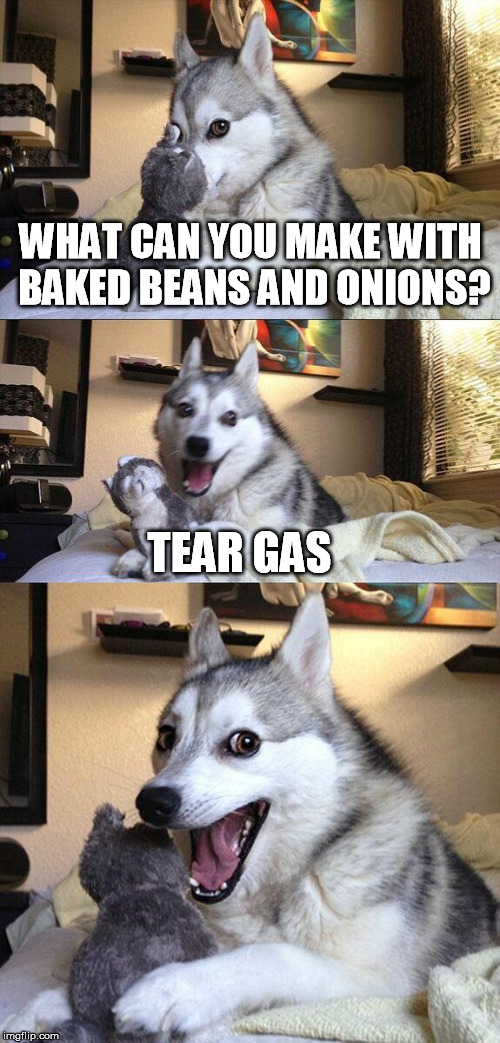 Bad Pun Dog Meme | WHAT CAN YOU MAKE WITH BAKED BEANS AND ONIONS? TEAR GAS | image tagged in memes,bad pun dog | made w/ Imgflip meme maker