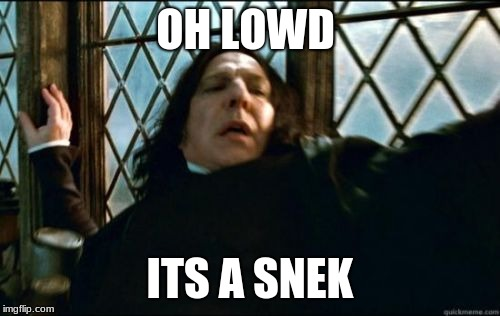 harry powtter | OH LOWD ITS A SNEK | image tagged in memes,snape | made w/ Imgflip meme maker