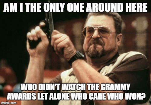 Am I The Only One Around Here | AM I THE ONLY ONE AROUND HERE WHO DIDN'T WATCH THE GRAMMY AWARDS LET ALONE WHO CARE WHO WON? | image tagged in memes,am i the only one around here | made w/ Imgflip meme maker
