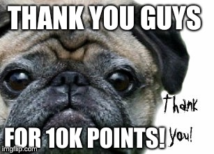 Thank you guys for 10K points! | THANK YOU GUYS FOR 10K POINTS! | image tagged in pug,thanks,thx,thanks mate,thank you | made w/ Imgflip meme maker