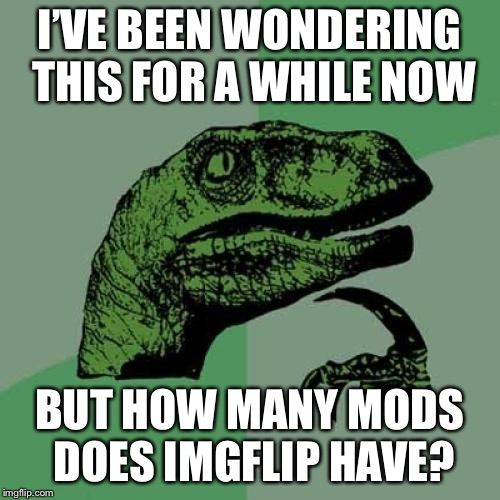 I know a few but I wonder how many there actually are on this site | I'VE BEEN WONDERING THIS FOR A WHILE NOW BUT HOW MANY MODS DOES IMGFLIP HAVE? | image tagged in memes,philosoraptor,imgflip mods,imgflip community | made w/ Imgflip meme maker