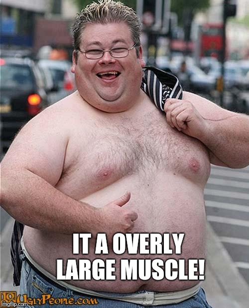 fat guy | IT A OVERLY LARGE MUSCLE! | image tagged in fat guy | made w/ Imgflip meme maker