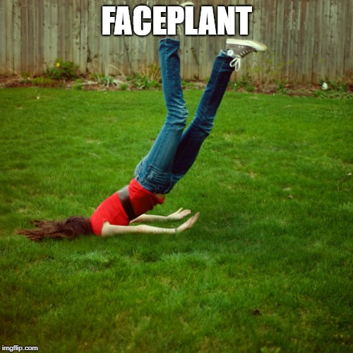 faceplant | FACEPLANT | image tagged in faceplant | made w/ Imgflip meme maker