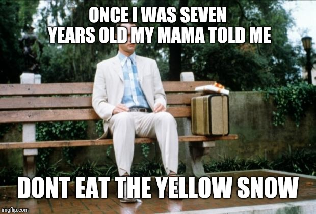 Forrest Gump | ONCE I WAS SEVEN YEARS OLD MY MAMA TOLD ME DONT EAT THE YELLOW SNOW | image tagged in forrest gump | made w/ Imgflip meme maker