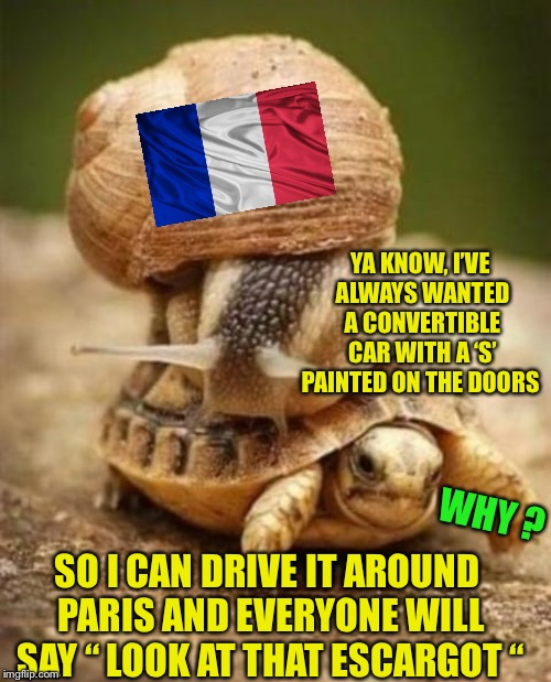 "YA KNOW, I'VE ALWAYS WANTED A CONVERTIBLE CAR WITH A 'S' PAINTED ON THE DOORS WHY ? SO I CAN DRIVE IT AROUND PARIS AND EVERYONE WILL SAY "" L 