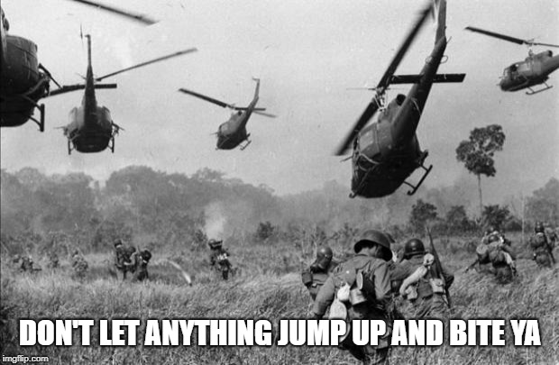 vietnam | DON'T LET ANYTHING JUMP UP AND BITE YA | image tagged in vietnam | made w/ Imgflip meme maker