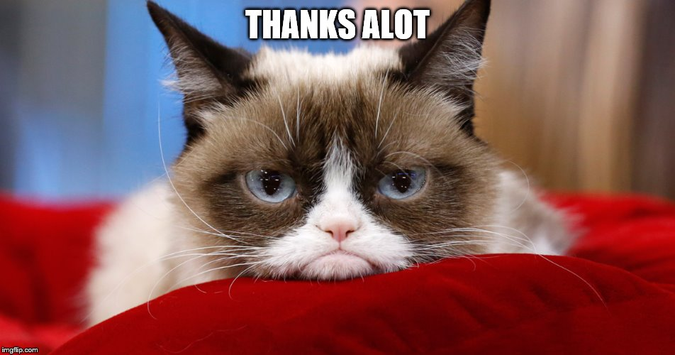 Grumpy Cat Thanks Alot | THANKS ALOT | image tagged in grumpy cat thanks alot | made w/ Imgflip meme maker