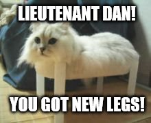 Forrest Gump Week (10-17) A CravenMoordik Event | LIEUTENANT DAN! YOU GOT NEW LEGS! | image tagged in forrest gump week,forrest gump,cravenmoordik,claybourne,cat | made w/ Imgflip meme maker