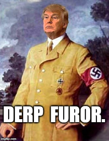 Derp Furor | DERP  FUROR. | image tagged in donald trump,hitler | made w/ Imgflip meme maker