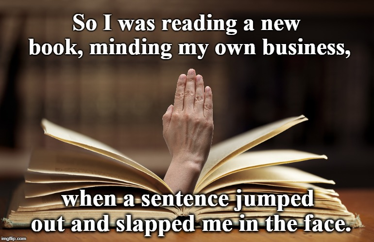 You Know It's A Good Book When... | So I was reading a new book, minding my own business, when a sentence jumped out and slapped me in the face. | image tagged in books,reading,writing,writers | made w/ Imgflip meme maker