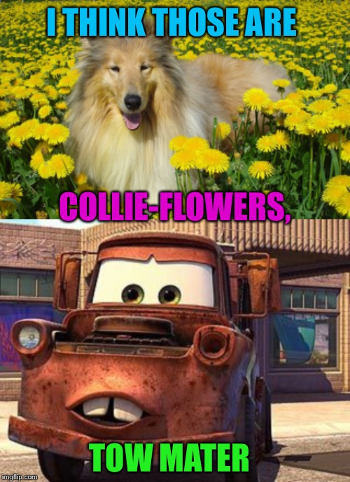 I THINK THOSE ARE TOW MATER COLLIE-FLOWERS, | made w/ Imgflip meme maker