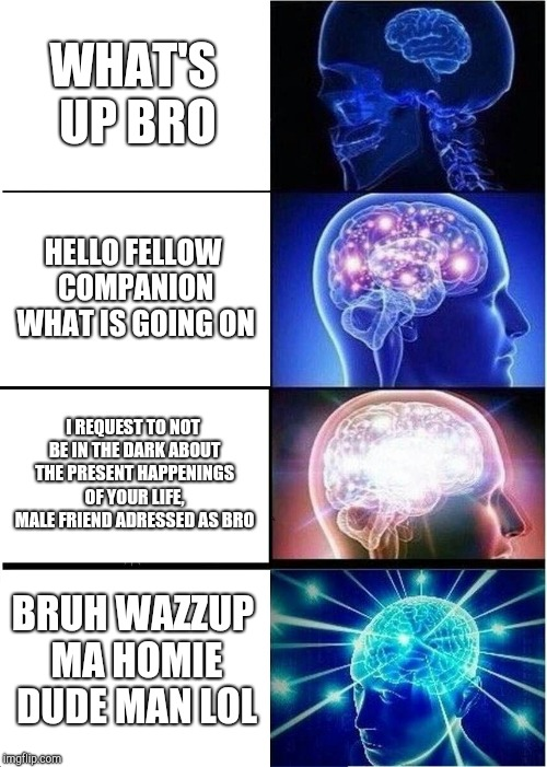 Expanding Brain Meme | WHAT'S UP BRO HELLO FELLOW COMPANION WHAT IS GOING ON I REQUEST TO NOT BE IN THE DARK ABOUT THE PRESENT HAPPENINGS OF YOUR LIFE, MALE FRIEND | image tagged in memes,expanding brain | made w/ Imgflip meme maker