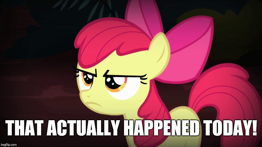 Angry Applebloom | THAT ACTUALLY HAPPENED TODAY! | image tagged in angry applebloom | made w/ Imgflip meme maker