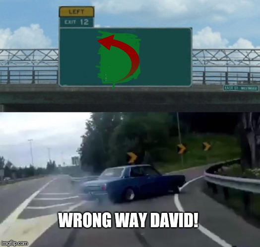 Left Exit 12 Off Ramp Meme | WRONG WAY DAVID! | image tagged in memes,left exit 12 off ramp | made w/ Imgflip meme maker