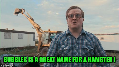 Trailer Park Boys Bubbles Meme | BUBBLES IS A GREAT NAME FOR A HAMSTER ! | image tagged in memes,trailer park boys bubbles | made w/ Imgflip meme maker