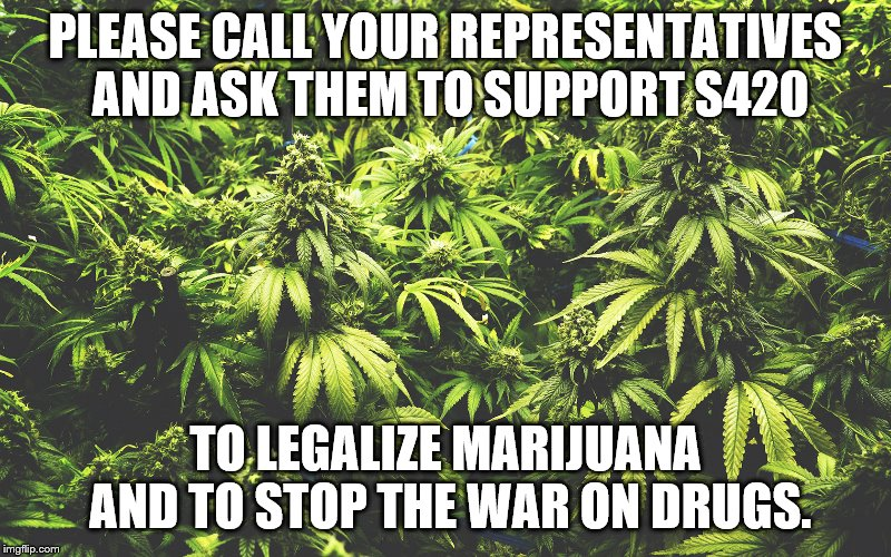 support420 | PLEASE CALL YOUR REPRESENTATIVES AND ASK THEM TO SUPPORT S420 TO LEGALIZE MARIJUANA AND TO STOP THE WAR ON DRUGS. | image tagged in marijuana | made w/ Imgflip meme maker