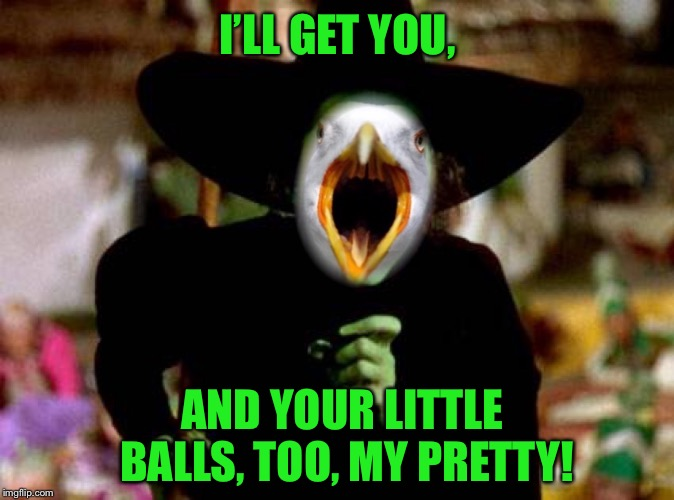 I'LL GET YOU, AND YOUR LITTLE BALLS, TOO, MY PRETTY! | made w/ Imgflip meme maker