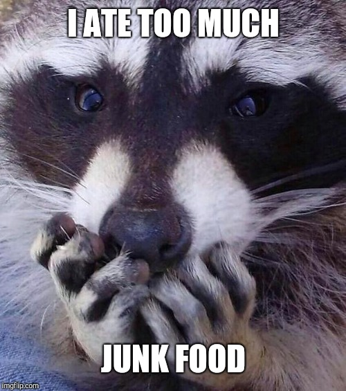 Addiction Racoon | I ATE TOO MUCH JUNK FOOD | image tagged in addiction racoon | made w/ Imgflip meme maker