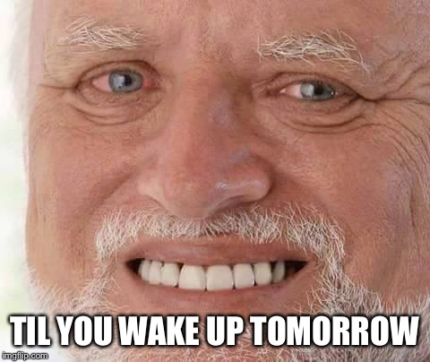 harold smiling | TIL YOU WAKE UP TOMORROW | image tagged in harold smiling | made w/ Imgflip meme maker
