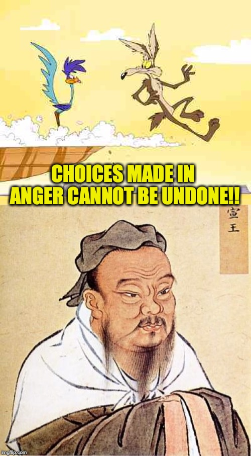 Choose Wisely | CHOICES MADE IN ANGER CANNOT BE UNDONE!! | image tagged in wile e coyote roadrunner,confucius says,words of wisdom,anger | made w/ Imgflip meme maker
