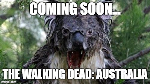 Angry Koala Meme |  COMING SOON... THE WALKING DEAD: AUSTRALIA | image tagged in memes,angry koala | made w/ Imgflip meme maker