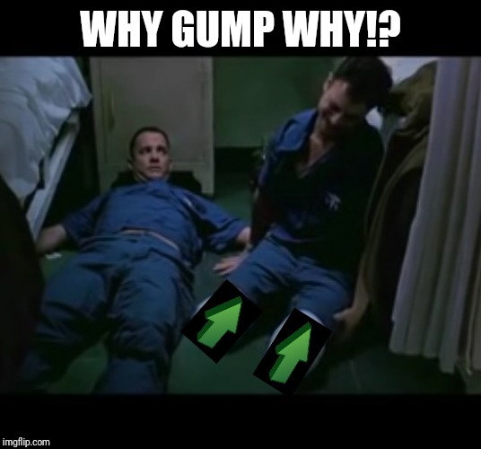 Lt. Dan no legs | WHY GUMP WHY!? | image tagged in lt dan no legs | made w/ Imgflip meme maker