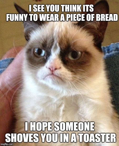 Grumpy Cat Meme | I HOPE SOMEONE SHOVES YOU IN A TOASTER I SEE YOU THINK ITS FUNNY TO WEAR A PIECE OF BREAD | image tagged in memes,grumpy cat | made w/ Imgflip meme maker